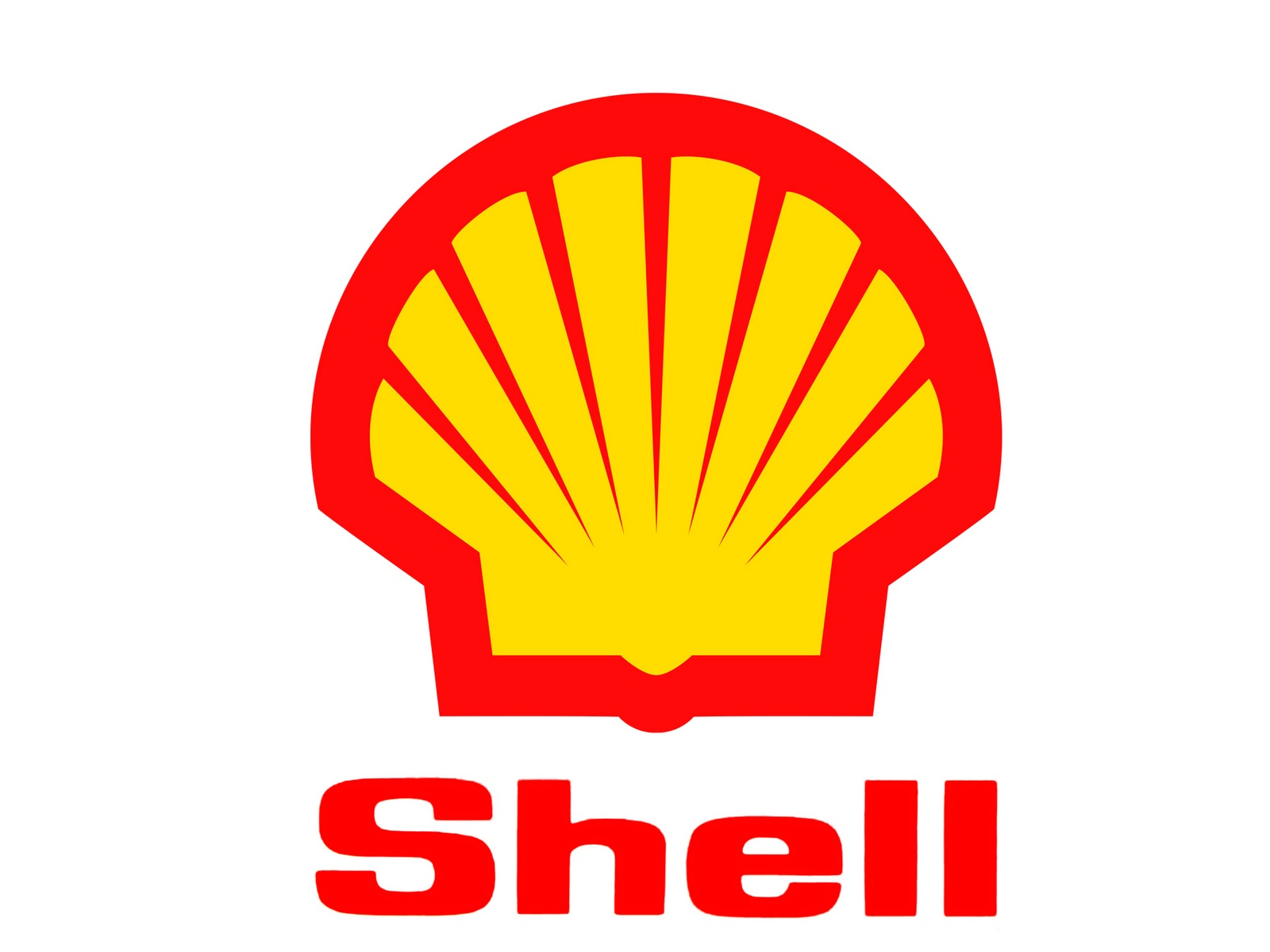 shell之磁盘初始化脚本